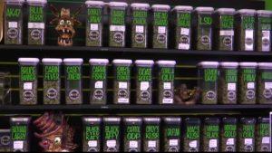 Montana Medical Marijuana