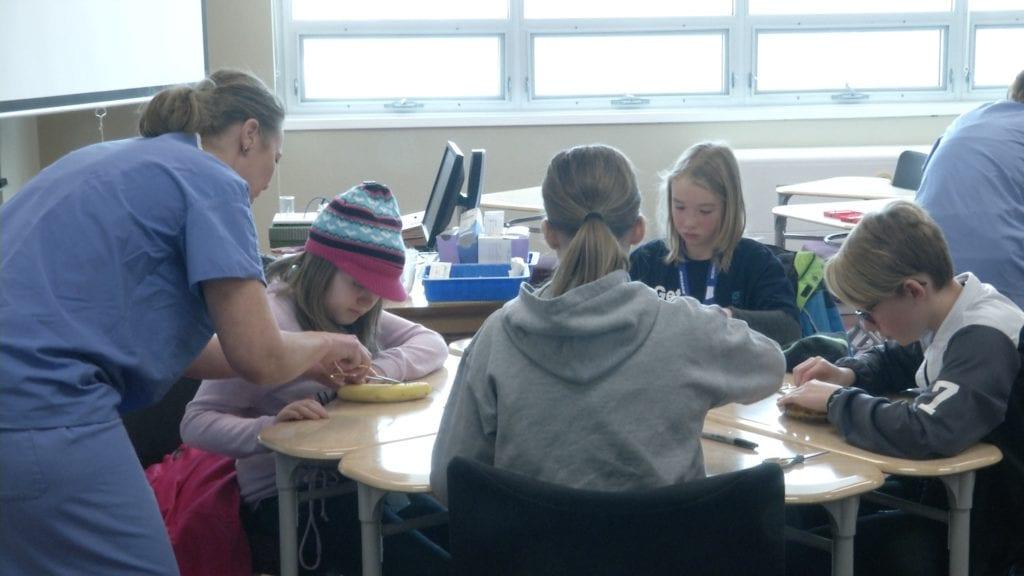 Girls' STEM Roundup